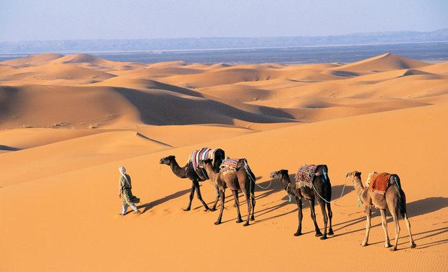 marokas54